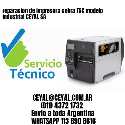 reparacion de impresora cebra TSC modelo industrial CEYAL SA