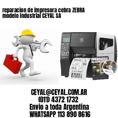 reparacion de impresora cebra ZEBRA modelo industrial CEYAL SA